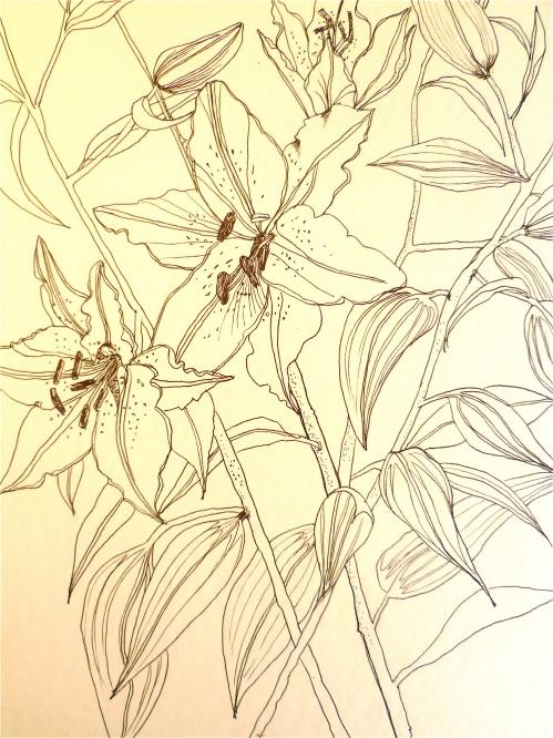 Lilies.